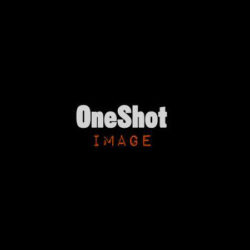 One Shot Image