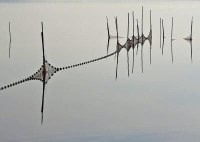 Riflessi in laguna